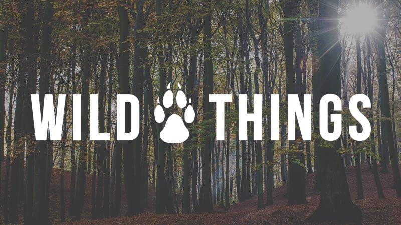 Wild Things   Trees Please!