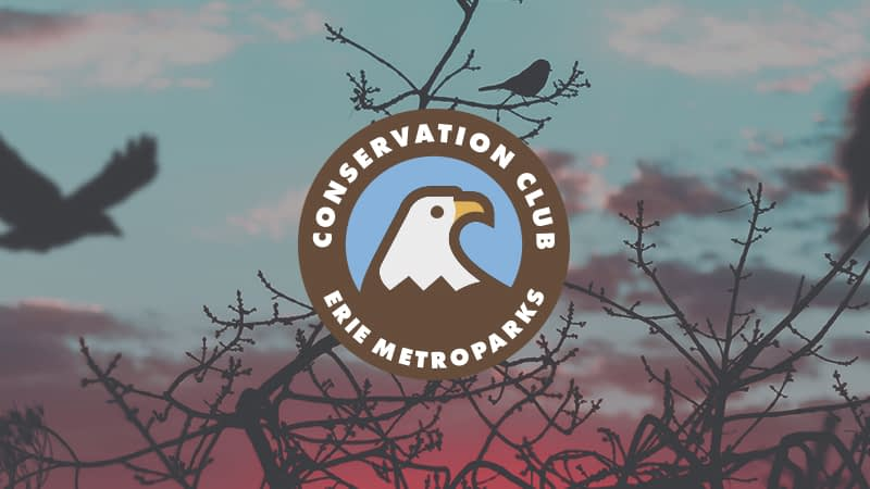 Conservation Club | Bird Count